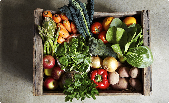 Fruit & Veg Delivery Boxes